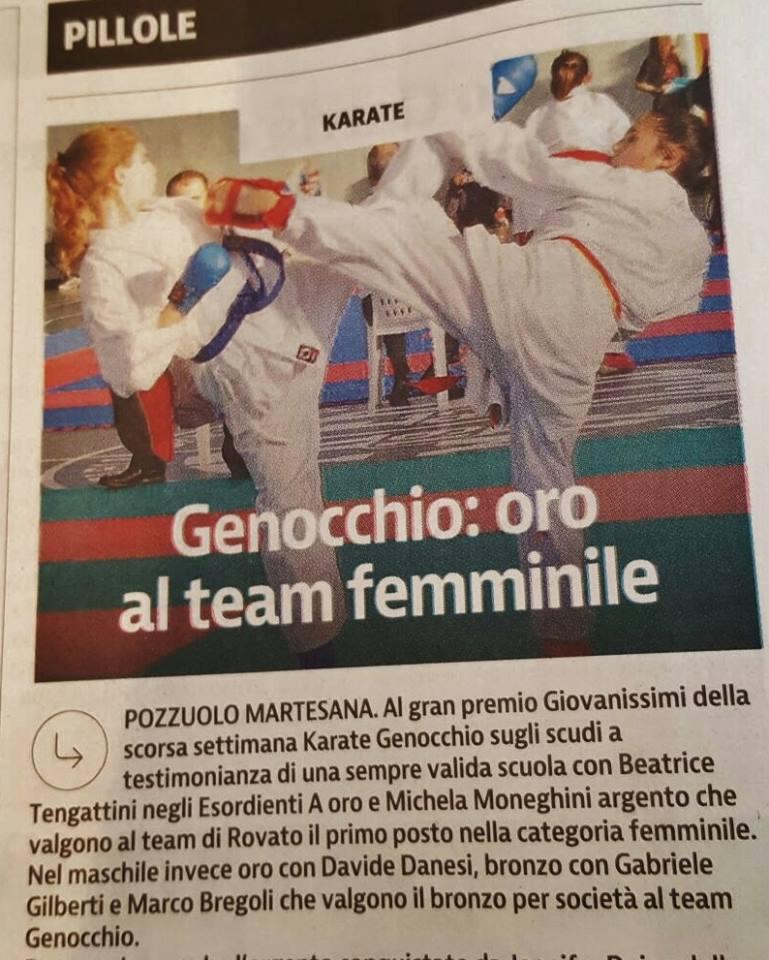Giornale di Brescia 17-11-2015